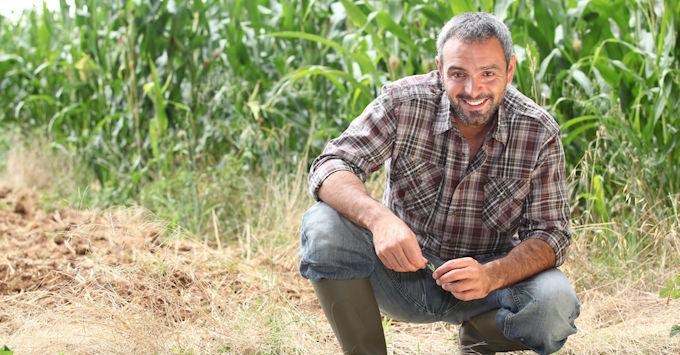 guy in cornfield